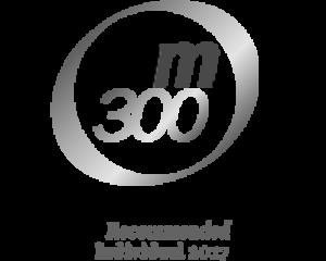iam-300-2017