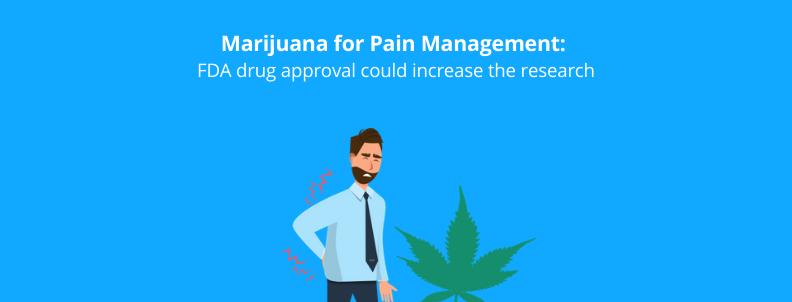Marijuana for Pain Management