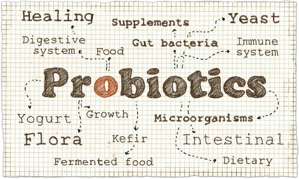 solutions to the shelf stability problem probiotics