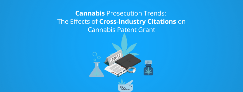 cannabis prosecution trends