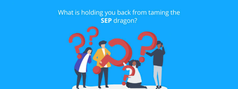 what-is-holding-you-back-from-taming-the-sep-dragon